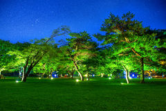 Park in the night at gyeongbokgung, Korea. Royalty Free Stock Image