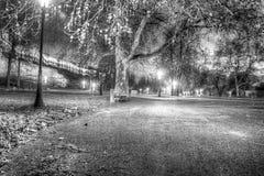 Park at night Royalty Free Stock Photos