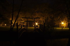 Park at night. Stock Image