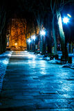 Park at night in winter Stock Photos