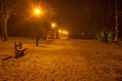 Park At night at winter Stock Photo