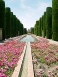 Park och damm i Alcazar av Cordoba Arkivbild