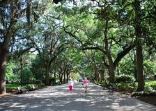 Park in the Old Town of Savannah, Georgia