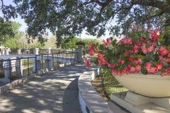 Park at Orlando Florida Stock Photo
