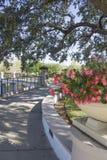 Park at Orlando Florida Royalty Free Stock Image