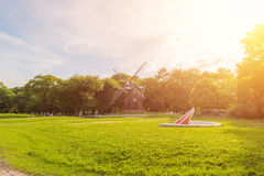 Park outdoor landscape with green grass. Royalty Free Stock Images