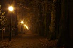 Park på natten Arkivbild