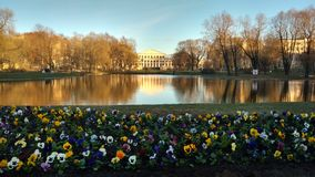 The Park of the Palace. The Park and pond of the Palace Stock Photography