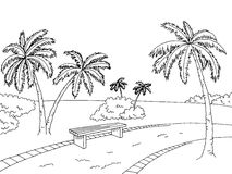 Park palm trees graphic art black white bench landscape sketch illustration Stock Image