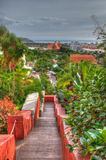 Park with palms and water slides, Tenerife, Canarian Islands Royalty Free Stock Image