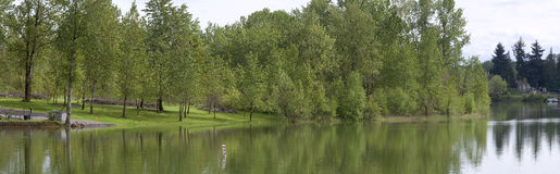 Park panorama, Woodland WA. Royalty Free Stock Photo