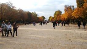 park in Parijs royalty-vrije stock fotografie