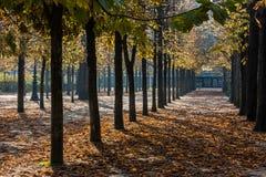 Park in Paris. Fantastic park in paris, near tour eiffel, in autumn stock photos