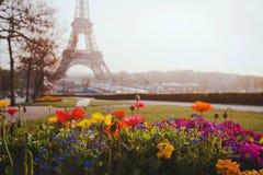 Park in Paris Royalty Free Stock Photos