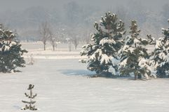 Park. First prizident, lands in the fog in winter. Kazakhstan. Almaty Stock Images