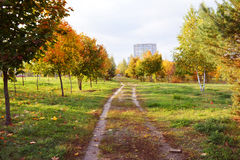 Park. Land on the outskirts of town Stock Images