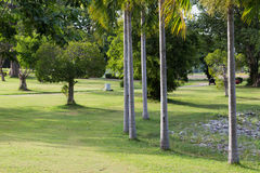 Park. S in central eastern province of Thailand Royalty Free Stock Images