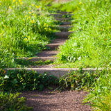 Park Path. Selective focus image of park trail disappearing into the distance Royalty Free Stock Images