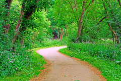 Park path. S-curve path in a park Stock Photos