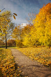 Park path in autumn Royalty Free Stock Photography