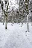Park path and bench in winter snow. Port Sunlight, Wirral, England stock photography