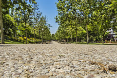 Park path. Gravel path through a park in a city Stock Photos