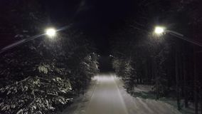 Park path at night in snow. Clip. Top view of mysterious and frightening turning off lights on forest trail plunging
