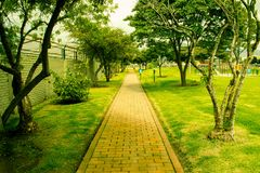 Park Path on a Sunny Day royalty free stock photo
