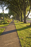 Park Pathway Stock Photography