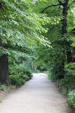 Park pathway. Beautiful and peaceful park pathway in summer Stock Image