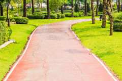 Park Pathway. Is cement floor with natural side Stock Photography