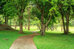 Park And Pathway Stock Images