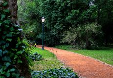 Park pathway green trees royalty free stock image