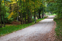 Park pathway. In sunny day Stock Image