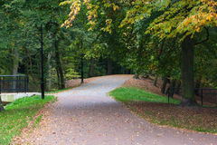 Park pathway. In sunny day around trees Royalty Free Stock Photos