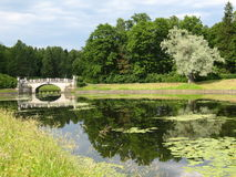 Park in Pavlovsk. Summer landscape - bridge on the lake in park belongs to king's palace in Pavlovsk near St. Petersburg Russia Stock Images