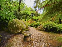 Park of Pena National Palace in Sintra Royalty Free Stock Photo