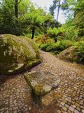 Park of Pena National Palace in Sintra Royalty Free Stock Images