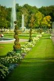Park in Peterhof Stock Photos