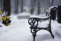 Park place at winter time, Kaliningrad Stock Photography