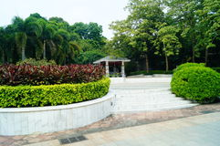 Park plant bonsai Stock Photo