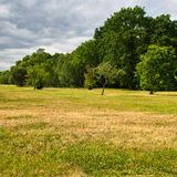 Park in Poland. Stock Image