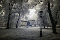 Park in Poland Stock Photos
