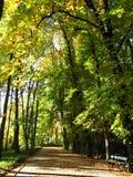 Park in Warsaw Stock Photo