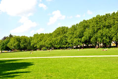 Park in a poland Stock Photography