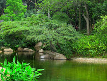 Park with pond Royalty Free Stock Images
