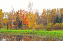 Park and pond at autumn. Royalty Free Stock Photos