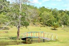 A park Stock Images