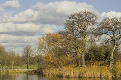 Park and pond of Clapham common in London Royalty Free Stock Image