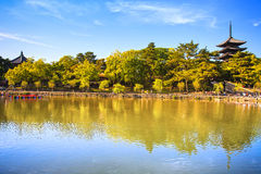 Park, pond and Toji temple pagoda in Nara city. Japan. Royalty Free Stock Images